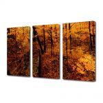 Set Tablouri Multicanvas 3 Piese Peisaj Ruginiu