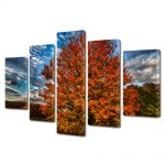 Set Tablouri Canvas 5 Piese Peisaj Nori in viteza