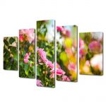 Set Tablouri Multicanvas 5 Piese Peisaj Trandafiri roz