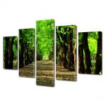 Set Tablouri Multicanvas 5 Piese Peisaj Poteca in parc