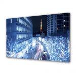 Tablou VarioView MoonLight Fosforescent Luminos in Urban Orase Lumini albastre in Tokyo