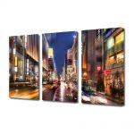 Set Tablouri Multicanvas 3 Piese Strada in Tokyo