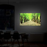 Tablou Canvas Luminos in intuneric VarioView LED Peisaj Poteca in parc