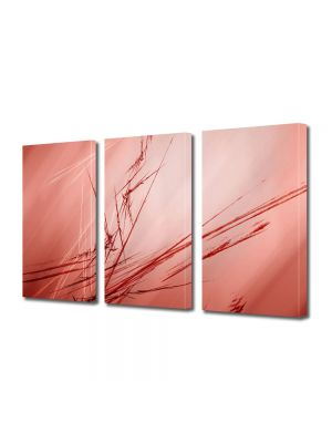Set Tablouri Multicanvas 3 Piese Abstract Decorativ Abstract