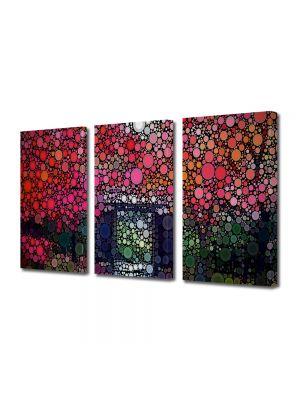 Set Tablouri Multicanvas 3 Piese Abstract Decorativ Cercuri in natura