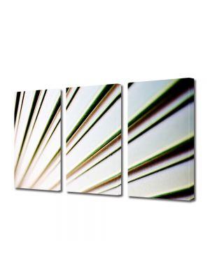 Set Tablouri Multicanvas 3 Piese Abstract Decorativ Raze