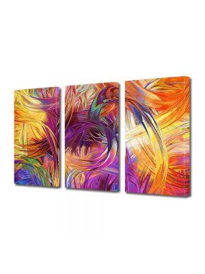 Set Tablouri Multicanvas 3 Piese Abstract Decorativ Vopseluri