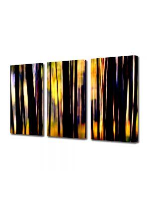Set Tablouri Multicanvas 3 Piese Abstract Decorativ In padure