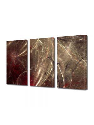 Set Tablouri Multicanvas 3 Piese Abstract Decorativ Aglomeratie
