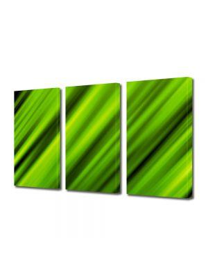 Set Tablouri Multicanvas 3 Piese Abstract Decorativ In viteza