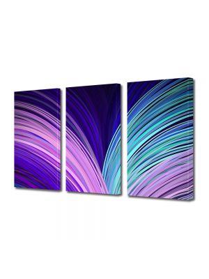 Set Tablouri Multicanvas 3 Piese Abstract Decorativ Carte abstracta