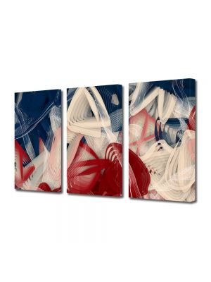 Set Tablouri Multicanvas 3 Piese Abstract Decorativ Artist