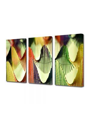 Set Tablouri Multicanvas 3 Piese Abstract Decorativ Corzi