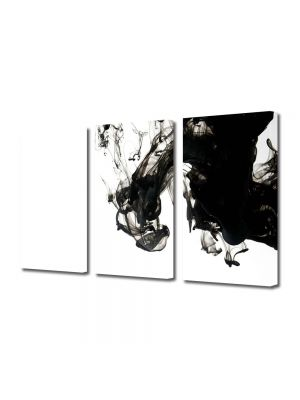 Set Tablouri Multicanvas 3 Piese Abstract Decorativ Fum B&W