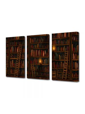 Set Tablouri Multicanvas 3 Piese Abstract Decorativ Biblioteca