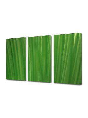 Set Tablouri Multicanvas 3 Piese Abstract Decorativ Fire de iarba