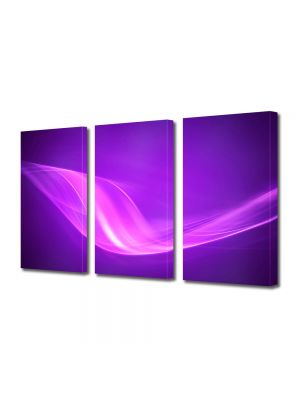 Set Tablouri Multicanvas 3 Piese Abstract Decorativ Raze violet