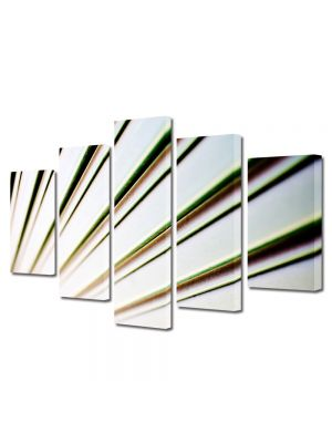 Set Tablouri Multicanvas 5 Piese Abstract Decorativ Raze