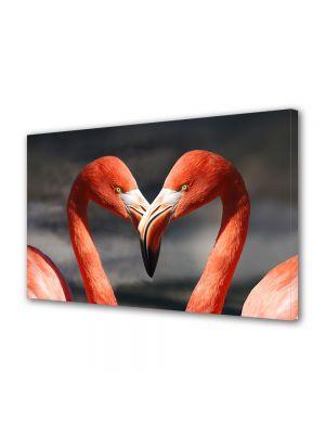 Tablou Canvas Animale Cuplu de flamingo