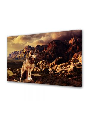 Tablou Canvas Luminos in intuneric VarioView LED Animale Lup in desert