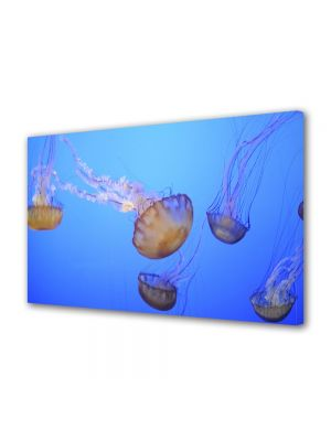 Tablou Canvas Luminos in intuneric VarioView LED Animale Meduze in ocean