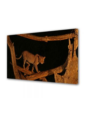 Tablou Canvas Animale Leopard in copac