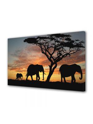 Tablou Canvas Luminos in intuneric VarioView LED Animale Elefanti de savana