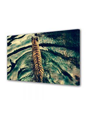 Tablou Canvas Luminos in intuneric VarioView LED Animale Dungi de tigru