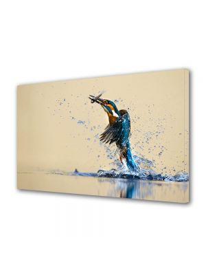 Tablou Canvas Animale Pasare de apa