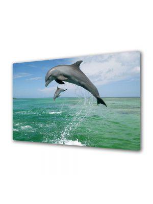 Tablou Canvas Luminos in intuneric VarioView LED Animale Delfini jucausi
