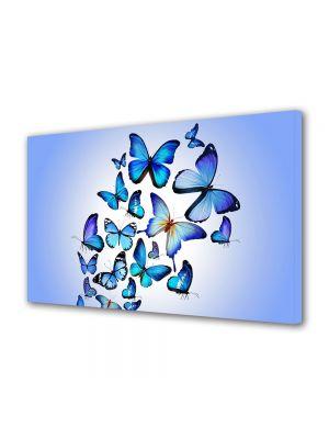 Tablou Canvas Luminos in intuneric VarioView LED Animale Colaj fluturi fundal albastru