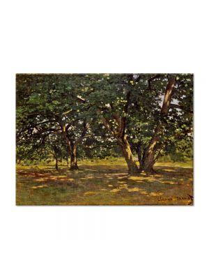 Tablou Arta Clasica Pictor Claude Monet Fontainebleau Forest 1865 80 x 110 cm