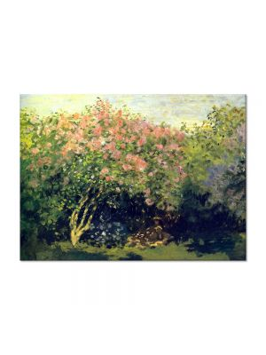 Tablou Arta Clasica Pictor Claude Monet Lilacs in the Sun 1872 80 x 110 cm