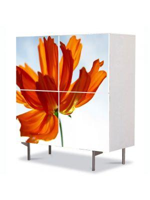 Comoda cu 4 Usi Art Work Flori Floare in lumina soarelui, 84 x 84 cm