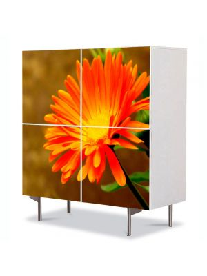 Comoda cu 4 Usi Art Work Flori Floare Portocalie, 84 x 84 cm