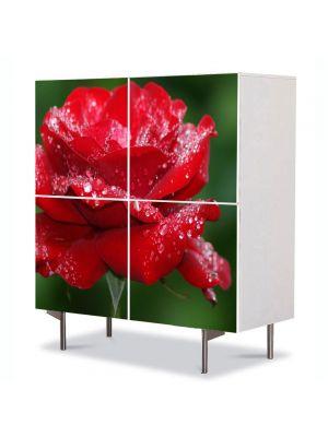 Comoda cu 4 Usi Art Work Flori Fir de trandafir plouat, 84 x 84 cm