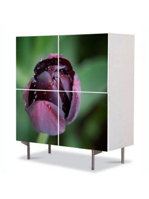 Comoda cu 4 Usi Art Work Flori Lalea neagra, 84 x 84 cm