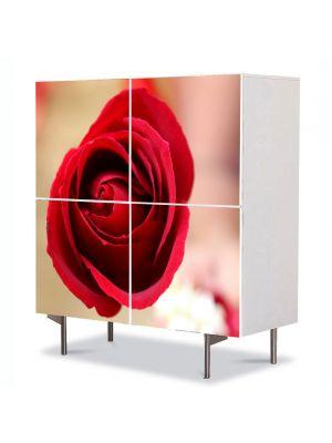 Comoda cu 4 Usi Art Work Flori Fir de trandafir rosu, 84 x 84 cm