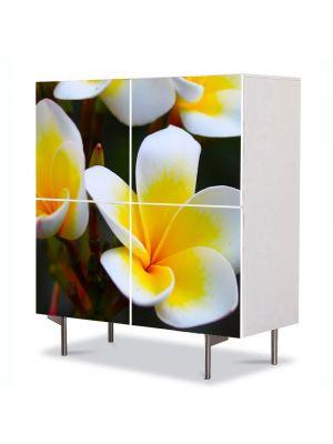 Comoda cu 4 Usi Art Work Flori Flori Frangipani, 84 x 84 cm