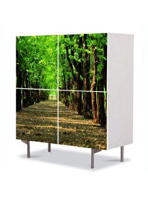 Comoda cu 4 Usi Art Work Peisaje Poteca in parc, 84 x 84 cm