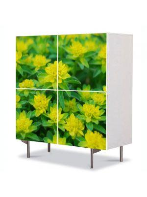 Comoda cu 4 Usi Art Work Peisaje Verde crud, 84 x 84 cm