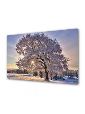 Tablou Canvas Iarna Copac plin de zapada