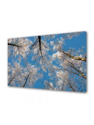 Tablou Canvas Iarna Vazduh