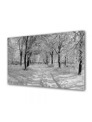 Tablou Canvas Iarna Alb Negru