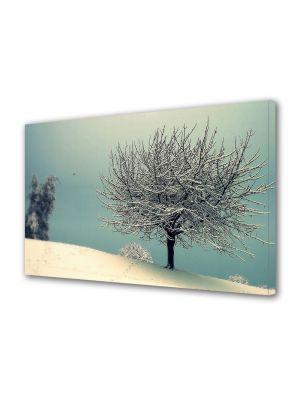 Tablou Canvas Iarna Copacel pe turcoaz