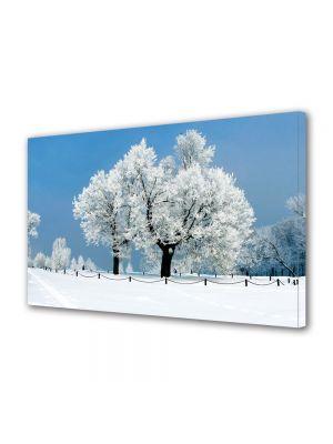 Tablou Canvas Iarna Palc de copaci ninsi