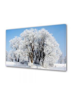 Tablou Canvas Sarbatori Craciun Copaci imbracati in alb