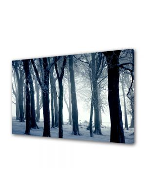 Tablou Canvas Iarna Iarna in padure