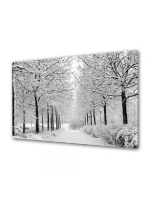 Tablou Canvas Iarna Alb perfect