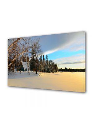 Tablou Canvas Iarna Culori de iarna